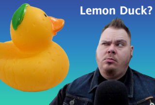 Looking suspiciously at a Lemon Duck